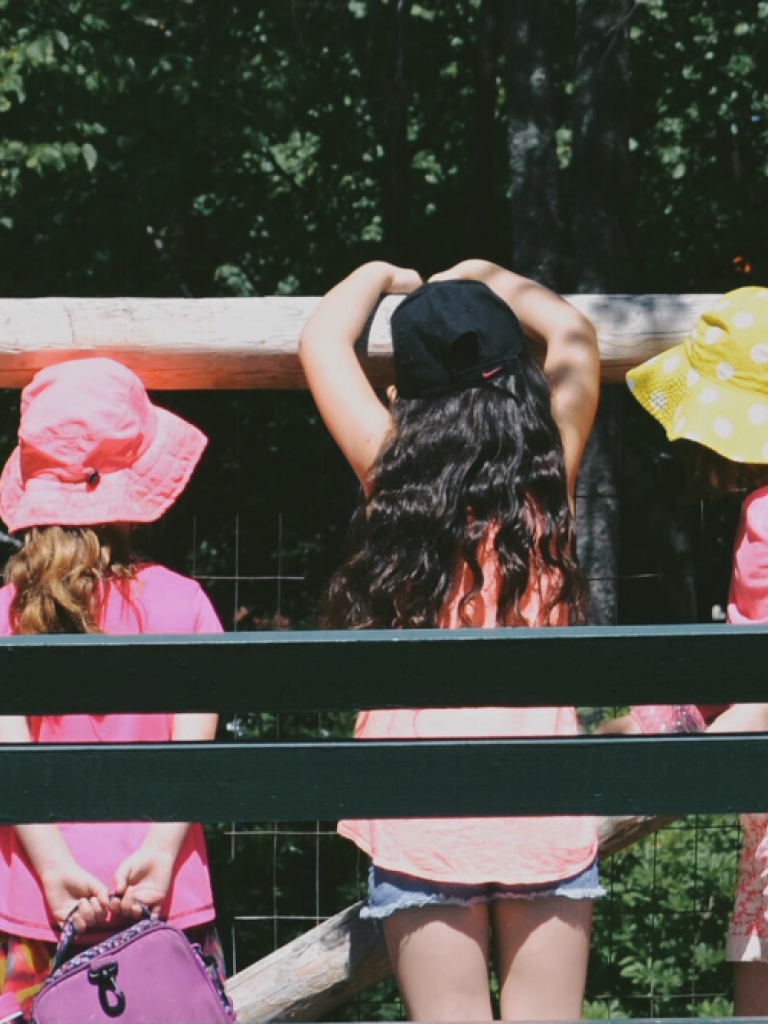 children looking through fence